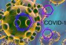 COVID -19: lupta impotriva noului virus si cum sa ne ferim de infectii crescand imunitatea